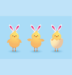 set cute chicks farm animal with broken egg vector image