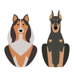 Shepherd retriever dog animal vector