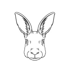 sketch of hares head portrait of forest animal vector image