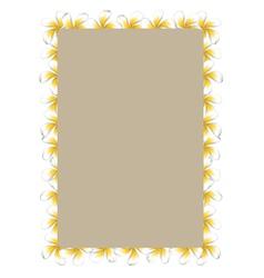 White frangipani flowers frame2 vector image