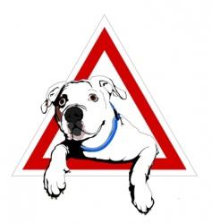 american bulldog on board vector image