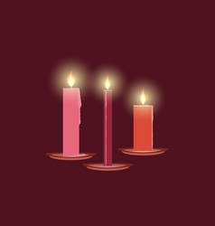burning candles christmas decorations leaking vector image