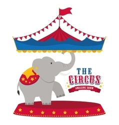 Elephant icon Circus and Carnival design vector