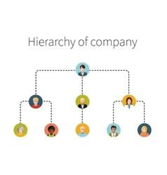 hierarchy company flat isolated vector image