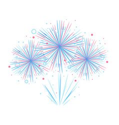 holiday firework independence day america vector image