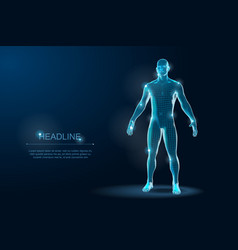 human body 3d polygonal wireframe blueprint vector image
