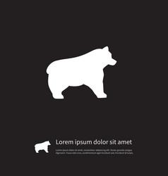 Isolated bear icon polar element can be vector