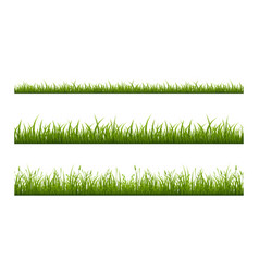 realistic green grass lawn border or meadow vector image