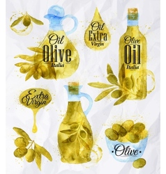 Watercolor drawn olive oil vector image