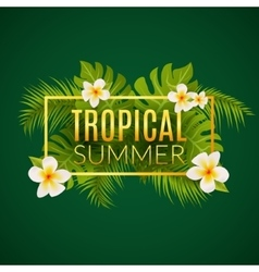 Tropical summer design poster template Summer vector image