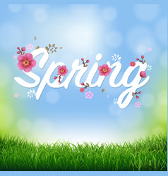 Nature background with grass border and text vector
