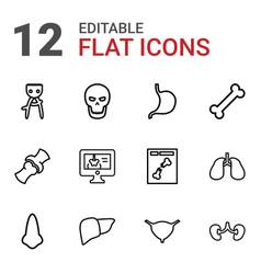 12 anatomy icons vector