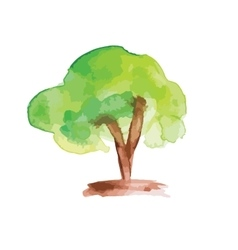 Art tree watercolor painting vector