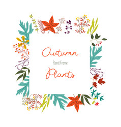 Autumn colorful plants in decorative element of vector