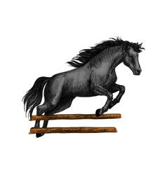 Horse jumping for equine horserace sport symbol vector