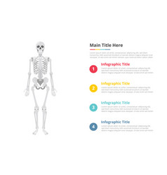 human skull infographics template with free space vector image