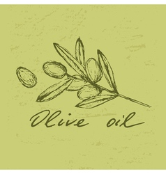 Olive oil badge vector
