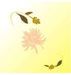 Soft floral composition with pink flower vector