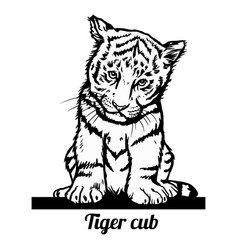 tiger cub - funny peeking out - isolated vector image