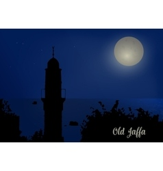 Silhouette of minarets against the night sky vector image