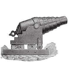 Armstrong cannon old engraving vector image