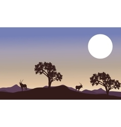 Antelope and full moon landscape silhouette vector