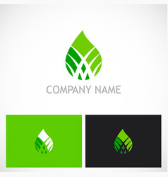 bio green water drop logo vector image