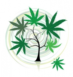 cannabis tree vector image