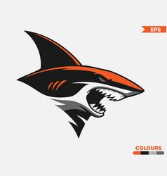 orange shark logo vector image