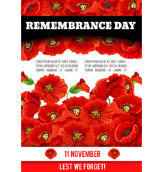 Poppy poster of remembrance day 11 november vector
