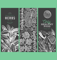 set tree culinary herbs banner templates hand vector image