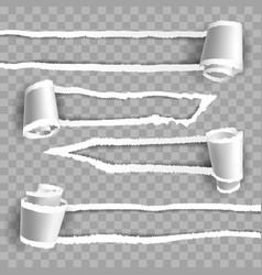 transparent paper rip vector image