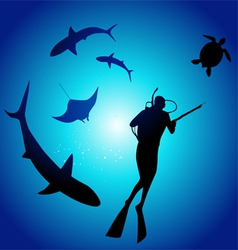 Shark and diver swimming with sharks vector image