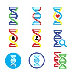 DNA genetics icons set vector image