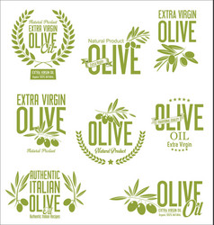 collections of olive oil labels vector image