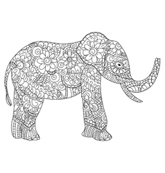 Elephant Coloring book for adults vector image