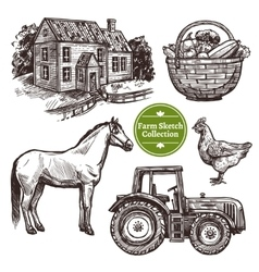 Farm Hand Drawn Sketch Set vector image