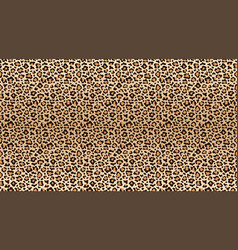 leopard print pattern seamless pattern of leopard vector image