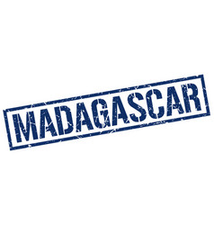 Madagascar blue square stamp vector