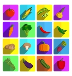 Modern vegetable icon set vector image
