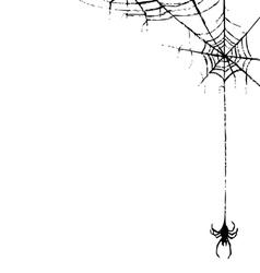 Spiderweb and spider vector
