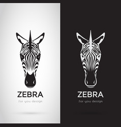 Zebra head design on white background and black vector