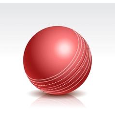a Cricket Ball vector image vector image
