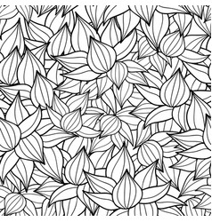 black drawing succulent plant texture vector image vector image