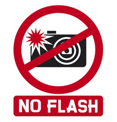 no flash sign vector image vector image