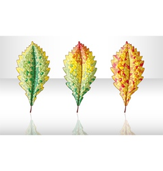 Autumn colorful leafs vector image
