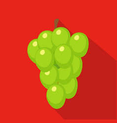 grapes flat icon vector image