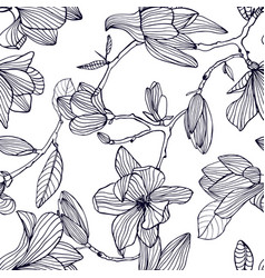 flowering magnolia hand drawn black and white vector image vector image