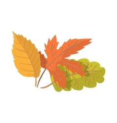 Autumn leaves cartoon icon vector image