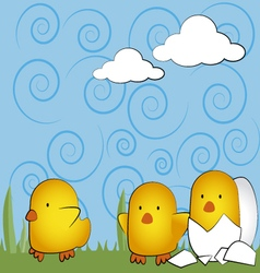 yellow chicks vector image vector image